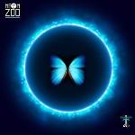 "Neon Zoo – ""O"""